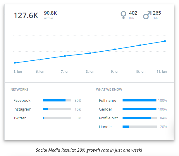 Strategia Di Marketing Digitale crescita social media